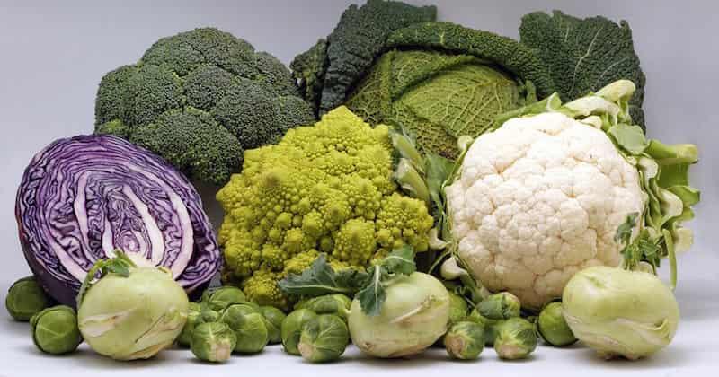 Cruciferous Vegetables, loose weight