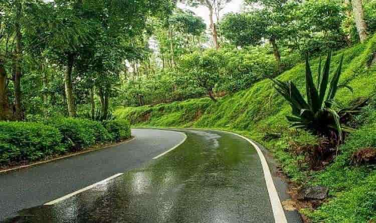 Yercaud - Jewel of the South
