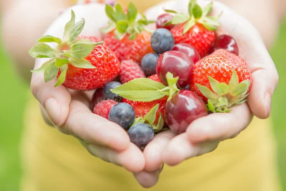 Consume Healthy Food