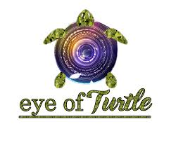 eye of turtle