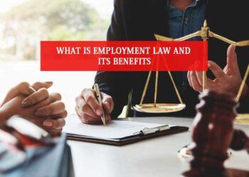 employment lawyer in Sydney